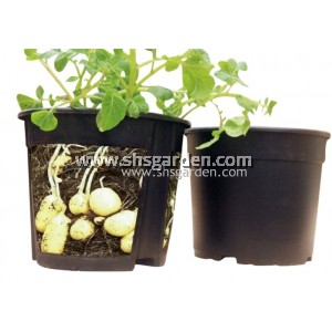 SHS Kebun 2-Piece-Design Potato Planter Pot
