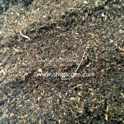 SHS Kebun Imported Peat Moss (1.8 kg) for Substrate Planting Microgreen Seed Germination