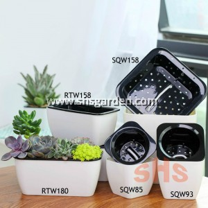 Mini and Small Square Self Watering Pot Wicking System Hydroponic Pot for Indoor Plant Succulent Cactus (White)