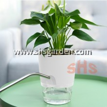 Small Self-watering Pot Hydroponic Pot (Transparent & White TW113)