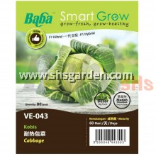 Baba F1 Cabbage Seeds SHS Kebun