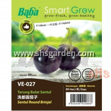 Baba Brinjal Seeds Sentul Round Brinjal VE-027 or Long Brinjal VE-023 or Brinjal Mini Cluster VE-034 Benih Terung Smart Grow Seeds SHS Kebun