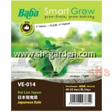 Baba Kale Seeds Japanese Kale VE-014 Chinese Kale VE-013 Benih Kai Lan Smart Grow SHS Kebun