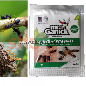 Baba Ant Bait Natural Organic Non Toxic For Red and Black Common Household Ants 8g Mr Ganick SHS Kebun