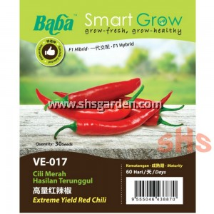 Baba Red Chili Seeds Extreme Yield or Cluster Chili Benih Cili Api Merah F1 Hybrid VE-015 VE-017 SHS Kebun