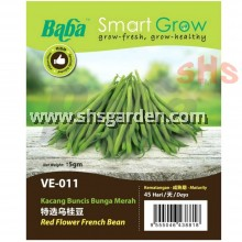 Baba French Bean Seeds Red Flower Non GMO Benih Kacang Buncit Bunga Merah Smart Grow VE-011 SHS Kebun