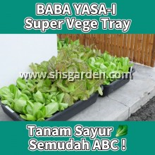 Baba YASA-I Super Vegetable Tray For Growing Vegetables Biodegradable Plastic 558MM (L) x 416MM (W) x 130MM (H) SHS KEBUN